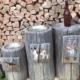 """3 Baumstämme mit Schildern. Ein Bild zum LiveBook-Thema """"Katalogabholer"""""""